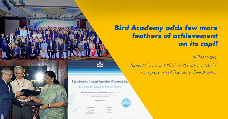 Bird Academy | Travel and Tourism | Civil Aviation
